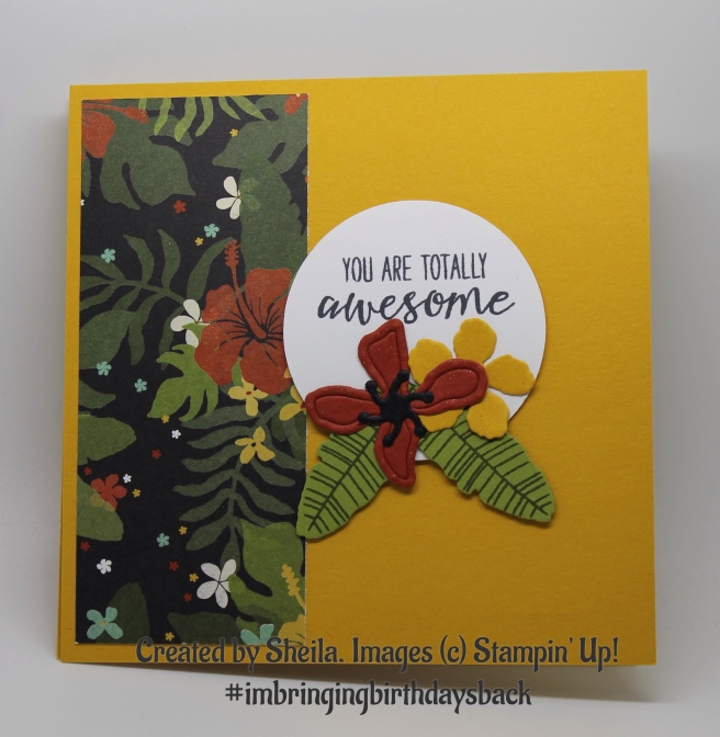 Created by Sheila for Kelly Kent - mypapercraftjourney.com. #imbringingbirthdaysback