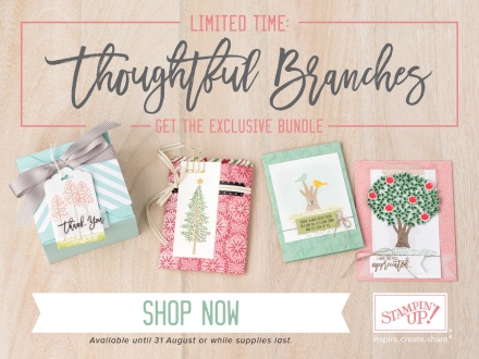 Thoughtful Banners stamp set - available August 2016.  Purchase via my online store (Australia only) to receive 2 free card kits.  Kelly Kent - mypapercraftjourney.com.