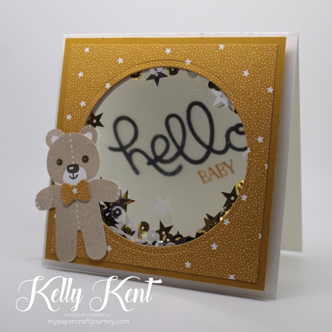 Presents & Pinecones Shaker Card Class - Hello Baby. Kelly Kent - mypapercraftjourney.com.