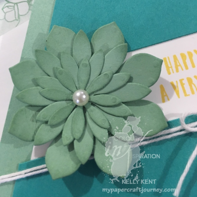 Colour INKspiration pre-challenge fun.  Succulent Birthday Card. Kelly Kent - mypapercraftjourney.com.