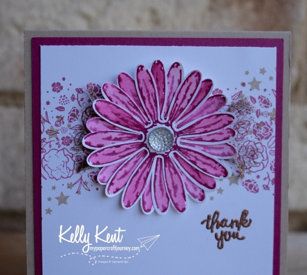 Daisy Delight | kelly kent