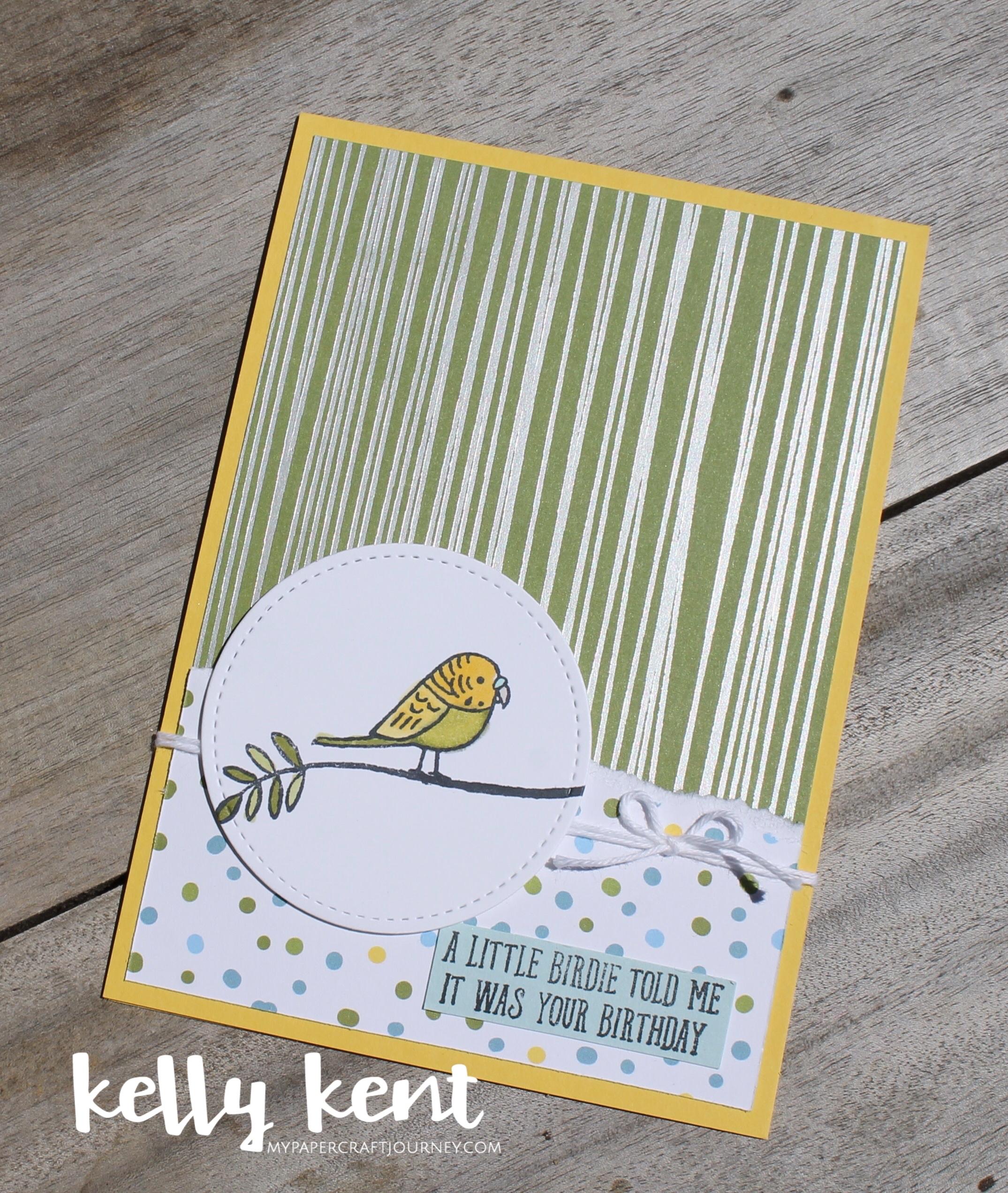 Bird Banter | kelly kent