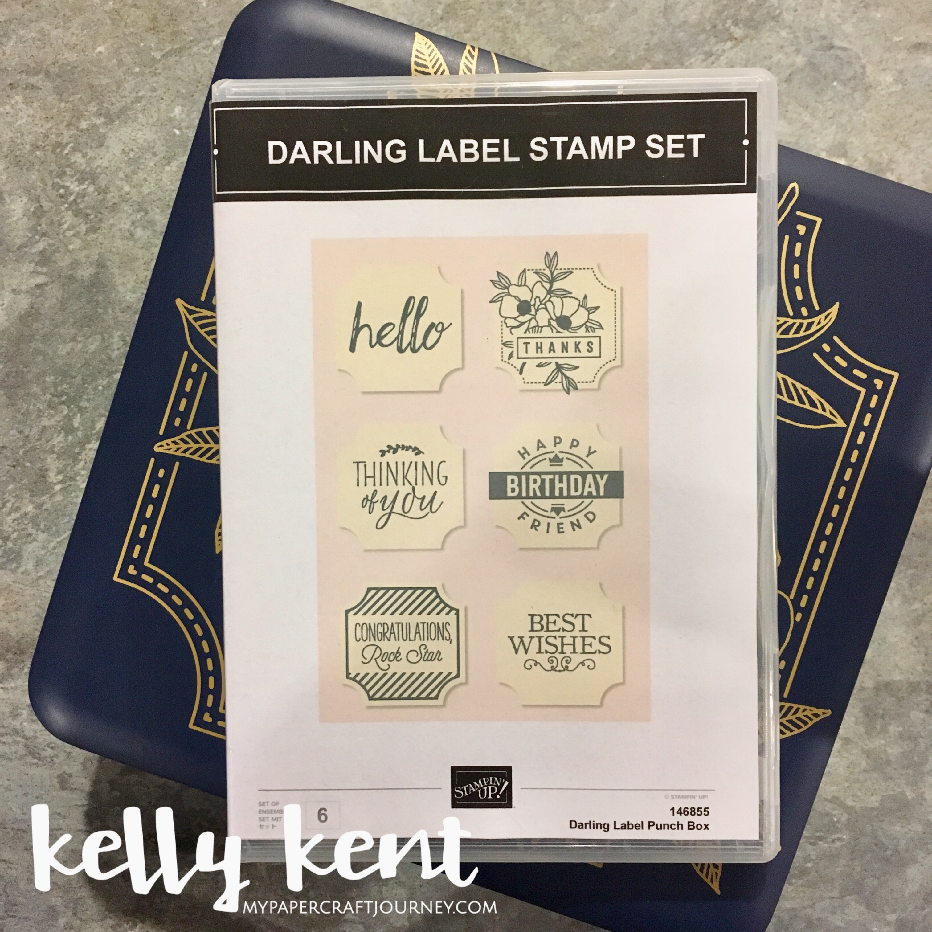 Printable Clear Case Insert - Darling Label Punch | kelly kent