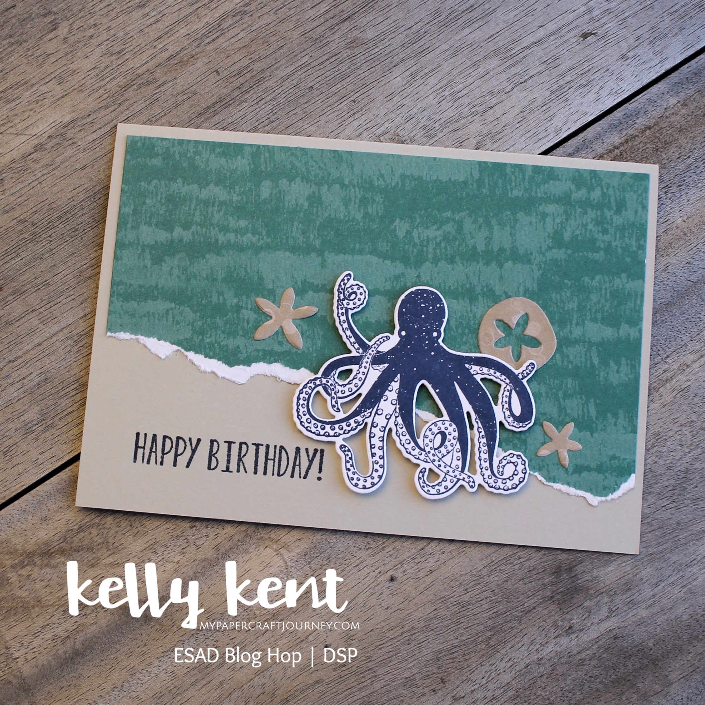 Tranquil Textures | kelly kent