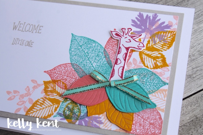 Animal Outing + Rooted in Nature baby card | kelly kent
