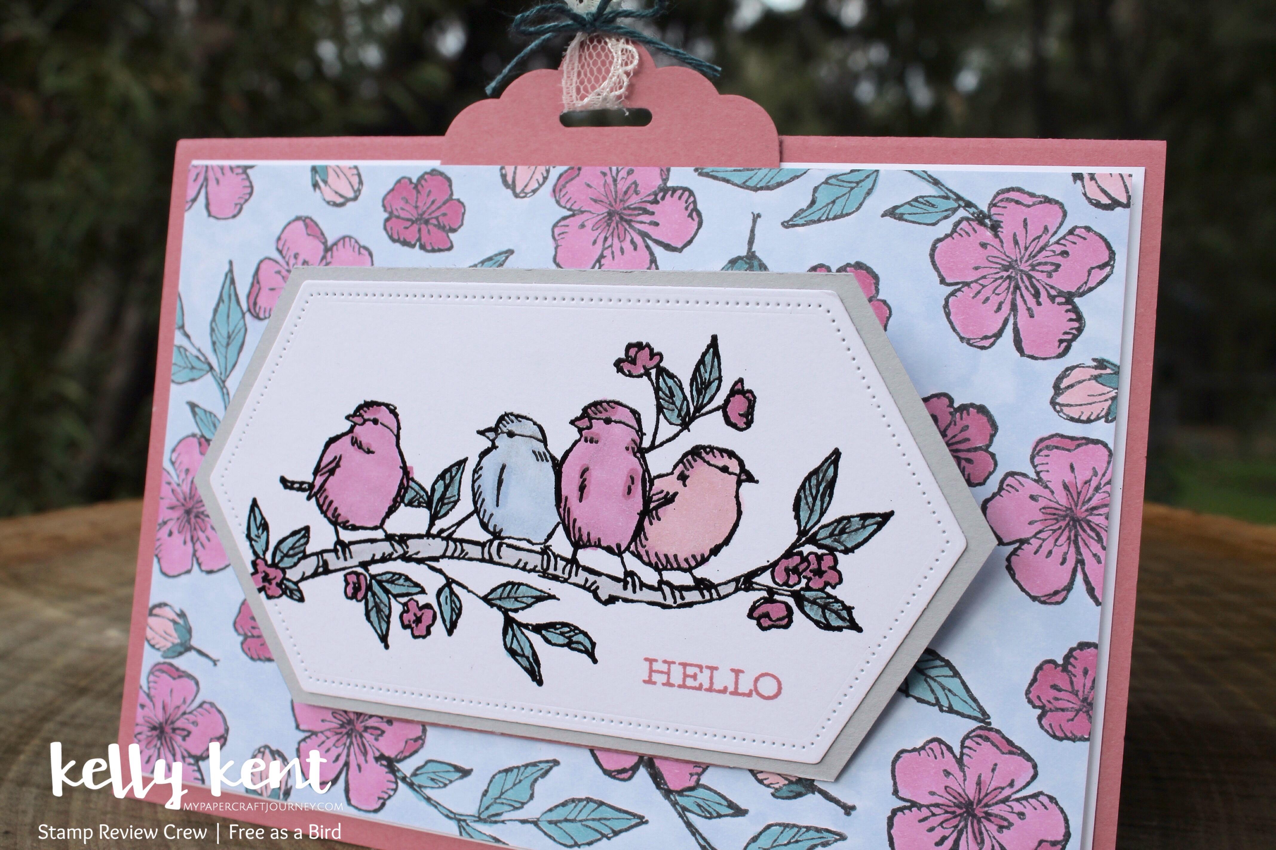 Free as a Bird | kelly kent