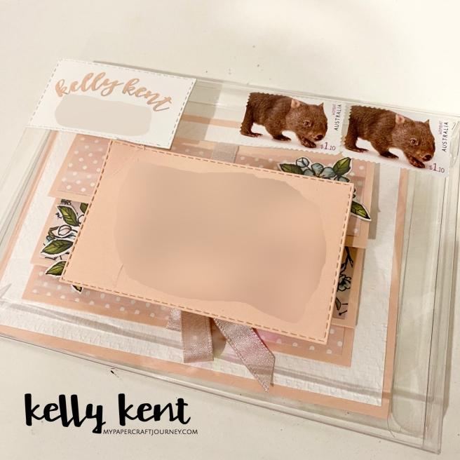 Acetate Box Envelope | kelly kent